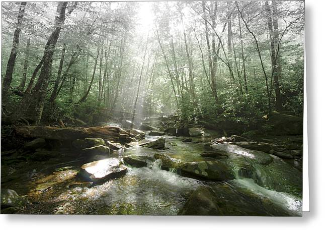 Tennessee River Greeting Cards - Beam me up to Heaven Greeting Card by Debra and Dave Vanderlaan