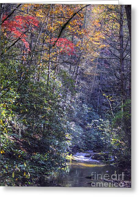 Kansas City Photographer Greeting Cards - Beam of Light Greeting Card by Crystal Nederman