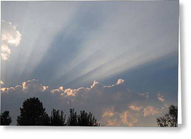 Siskiyou County Greeting Cards - Beams of Sunlight  Greeting Card by MaryEllen Frazee