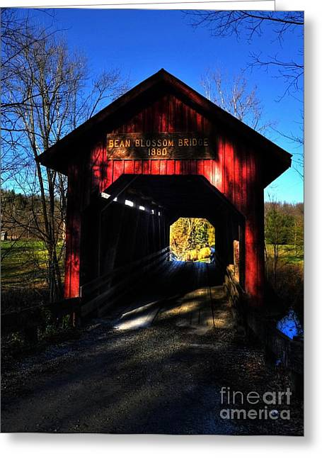 Rural Indiana Greeting Cards - Bean Blossom Bridge 2 Greeting Card by Mel Steinhauer