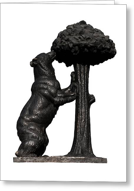 White Background Greeting Cards - Bear and the Madrono Tree Greeting Card by Fabrizio Troiani