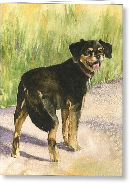 Dog Walking Paintings Greeting Cards - Bear Greeting Card by Anne Gifford