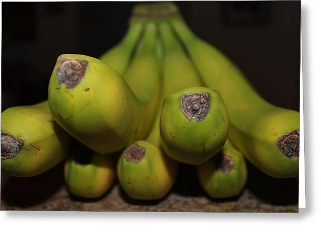Healthy Greeting Cards - Bear Face Bananas  Greeting Card by Cynthia Guinn