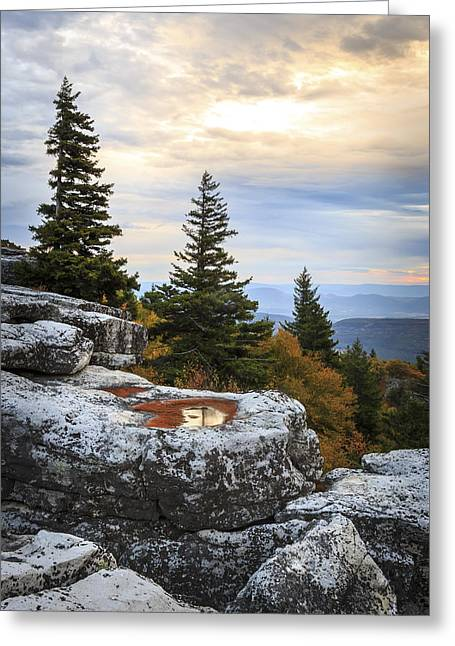 Dolly Sods Wilderness Greeting Cards - Bear Rocks Portrait Greeting Card by Jennifer Grover