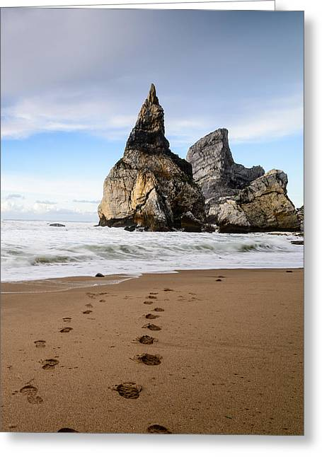 Atlantic Beaches Greeting Cards - Bears Beach IV Greeting Card by Marco Oliveira