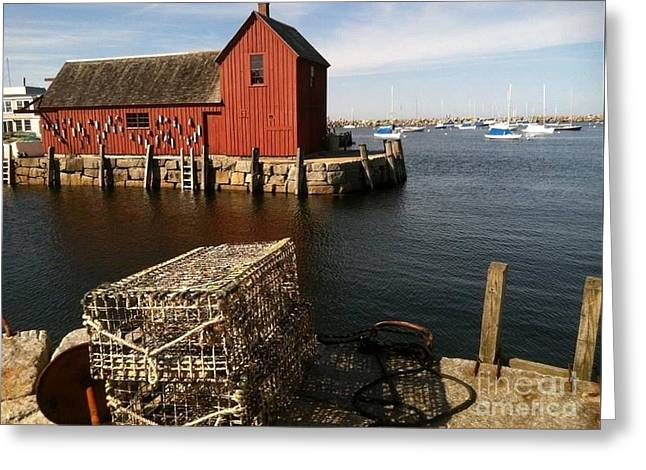 Old Maine Barns Greeting Cards - Bearskin Neck Maine Greeting Card by Barbara Chase