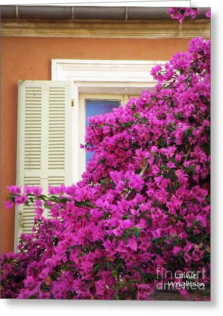 Beaucoup Bougainvillea  Greeting Card by Lainie Wrightson