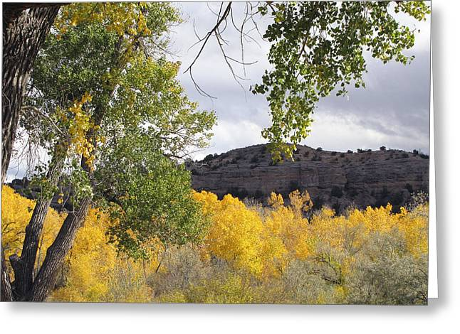 Southwest Oklahoma Greeting Cards - Beautiful Autumn Landscape  Greeting Card by Ann Powell