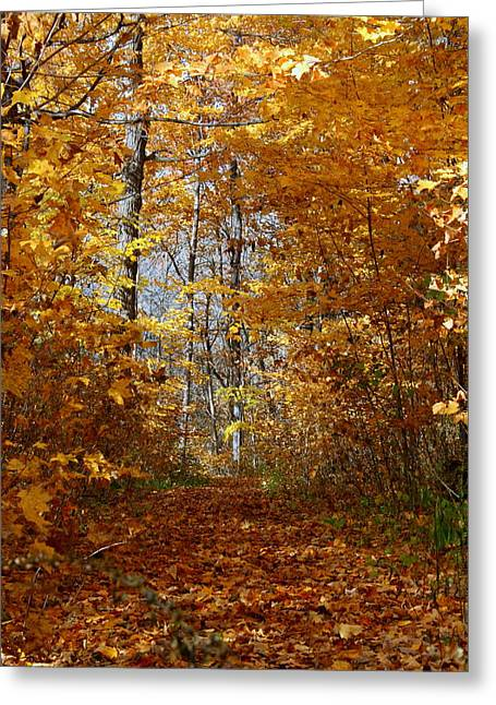 Beautiful Autumn Sanctuary Greeting Card by Kay Novy