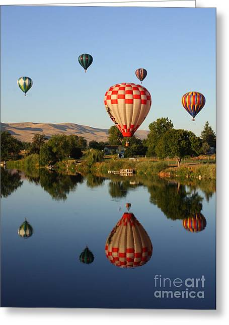 Reflection Of Trees Greeting Cards - Beautiful Balloon Day Greeting Card by Carol Groenen
