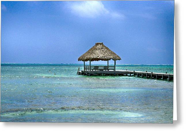 Beautiful Belize Greeting Card by Kristina Deane