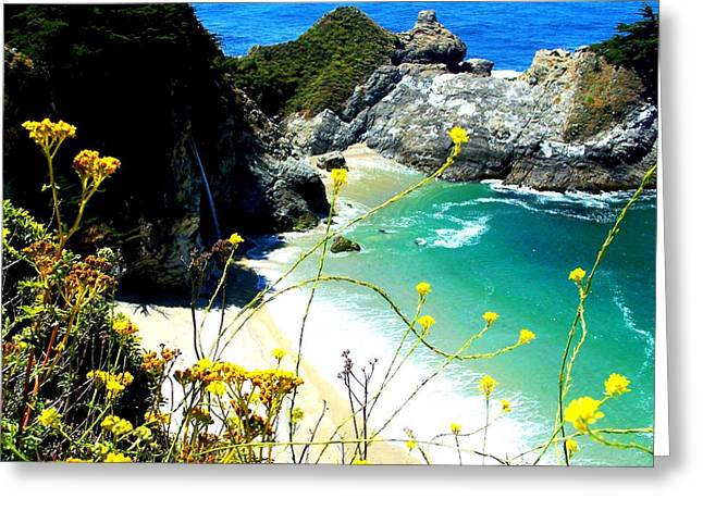 Picture Of Big Sur Beach Greeting Cards - Beautiful Big Sur Greeting Card by Marin Packer