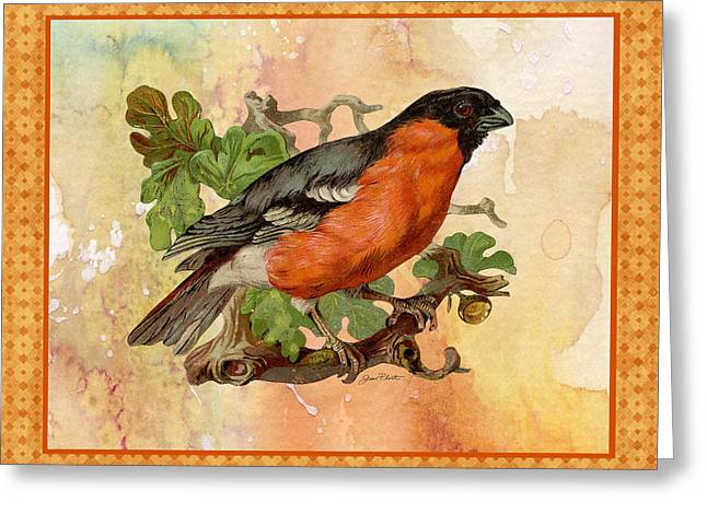Abstract Digital Paintings Greeting Cards - Beautiful Bird-A Greeting Card by Jean Plout