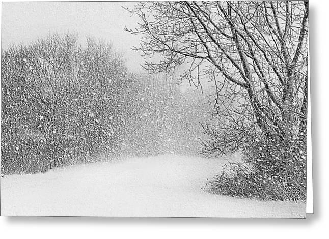 Snowstorm Greeting Cards - Beautiful Blizzard Greeting Card by Kristin Elmquist