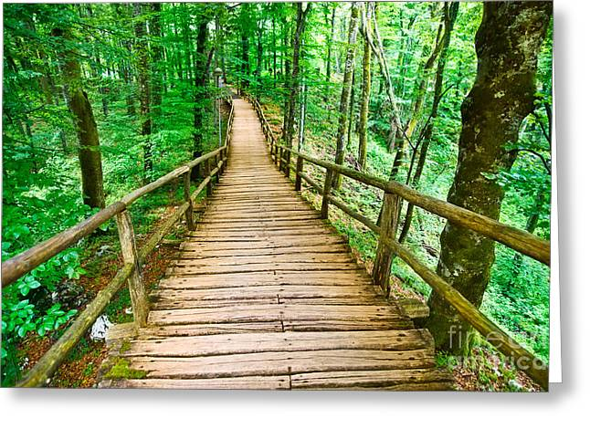 Perspective Pyrography Greeting Cards - Beautiful boardwalk in forest Greeting Card by Boon Mee