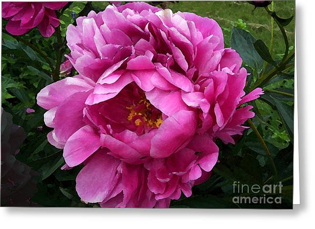 Fushia Greeting Cards - Beautiful Bright Pink Frilly Peony Greeting Card by Maureen Tillman