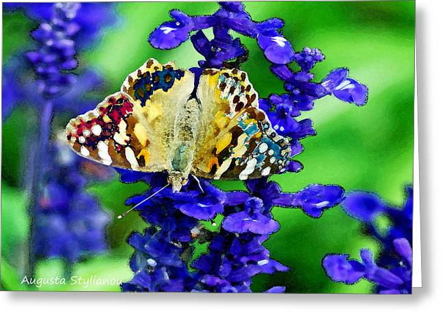 Vivid Colour Digital Art Greeting Cards - Beautiful butterfly on a flower Greeting Card by Augusta Stylianou