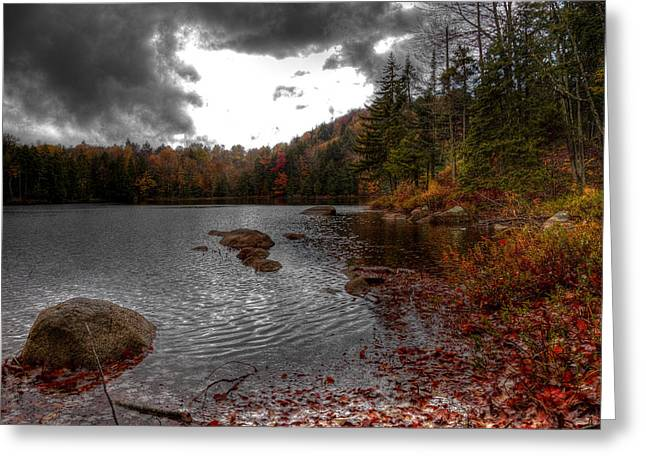 Fir Trees Greeting Cards - Beautiful Cary Lake Greeting Card by David Patterson