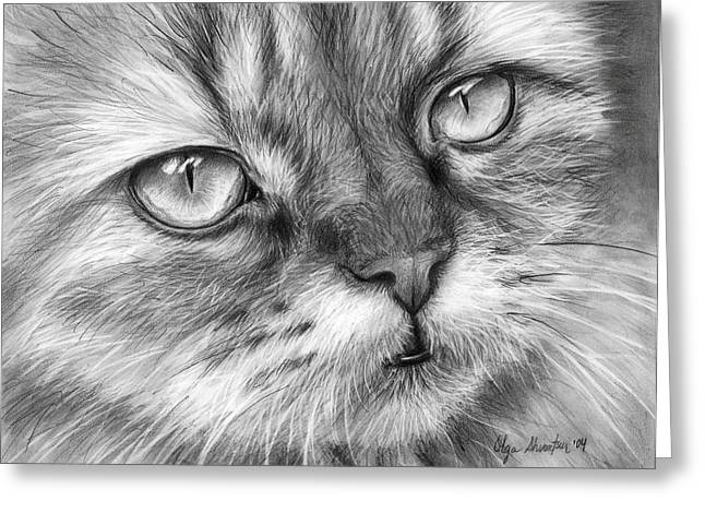 Black And White Drawings Greeting Cards - Beautiful Cat Greeting Card by Olga Shvartsur
