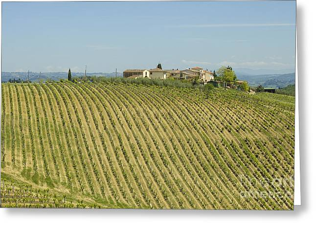 Chianti Greeting Cards - Beautiful Chianti region in Tuscany Greeting Card by Patricia Hofmeester