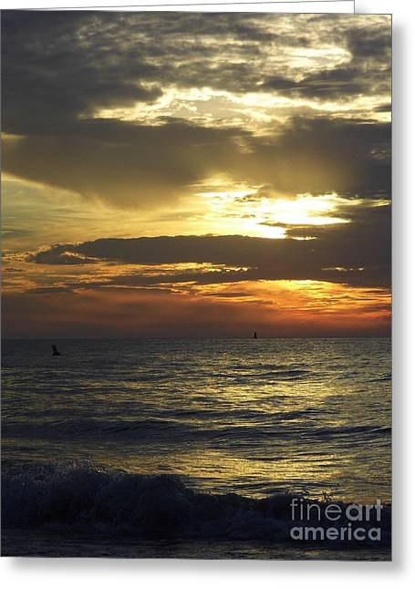 Reflection Of Sun In Clouds Greeting Cards - Beautiful Clearwater Sunset Greeting Card by D Hackett