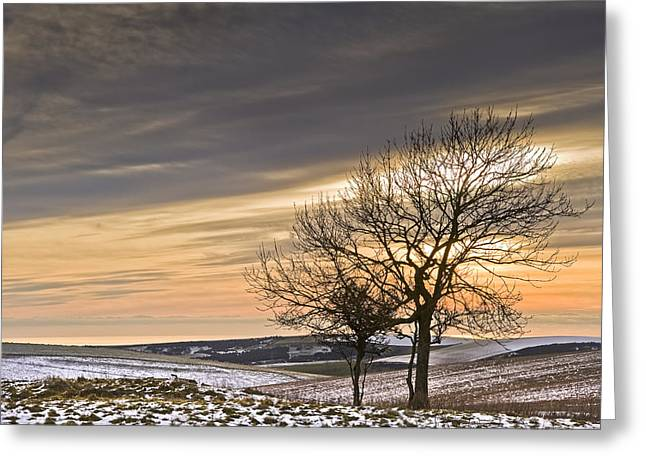 Colrful Greeting Cards - Beautiful colorful Winter sunset Greeting Card by Matthew Gibson