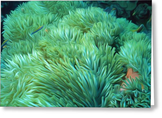 Granulatus Greeting Cards - Beautiful coral reef 2 Greeting Card by Lanjee Chee