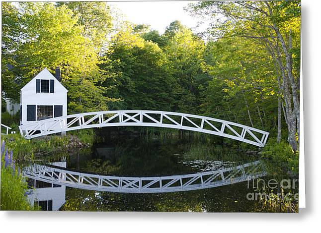 Beautiful Scenery Greeting Cards - Beautiful Curved Bridge In Somesville Greeting Card by Bill Bachmann