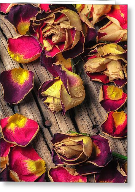 Blushing Greeting Cards - Beautiful decay Greeting Card by Garry Gay