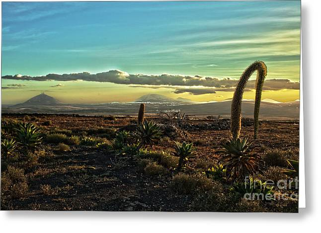 Lanzarote Greeting Cards - Beautiful desert landscape Greeting Card by Patricia Hofmeester