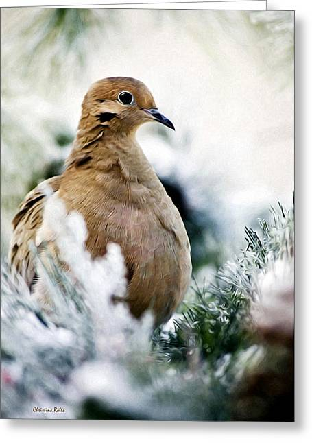 Mourning Dove Greeting Cards - Beautiful Dove Greeting Card by Christina Rollo