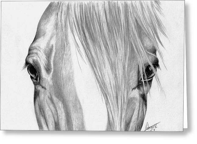 Forelock Drawings Greeting Cards - Beautiful Eyes Greeting Card by Robyn Green