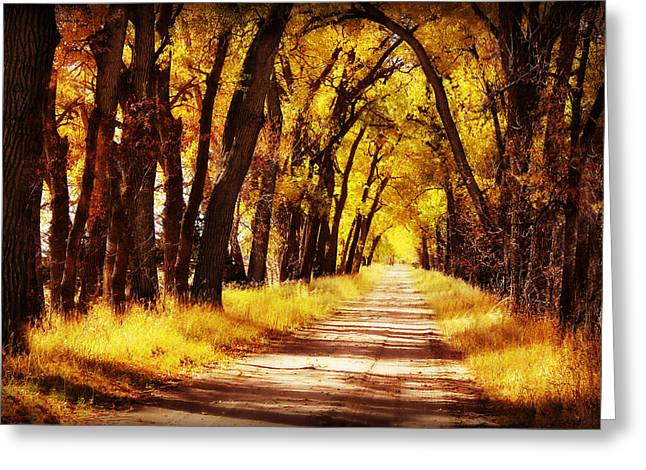 Beautiful Fall Day in Nebraska Greeting Card by Julie Hamilton