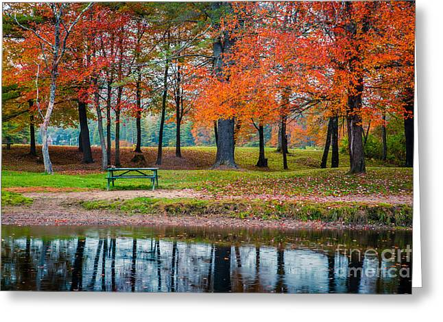 New England Foliage Greeting Cards - Beautiful Fall Foliage in New Hampshire Greeting Card by Edward Fielding