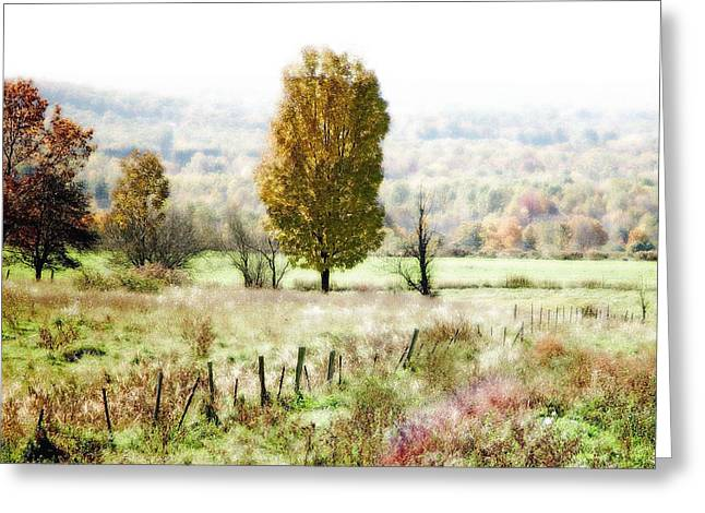 Fall Scenes Greeting Cards - Beautiful Fall Landscape - Looks Like A Painting Greeting Card by James Scott Preston