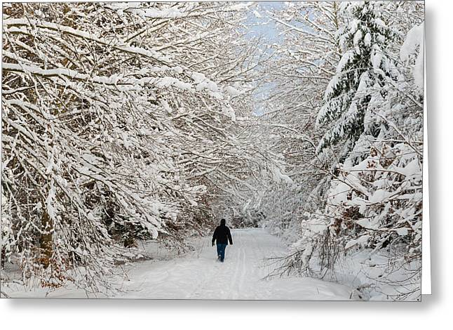 Woodland Scenes Greeting Cards - Beautiful forest in winter with snow covered trees Greeting Card by Matthias Hauser