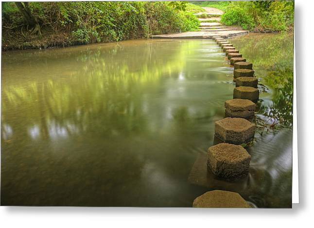 Beautiful Forest Scene Of Enchanted Stream Flowing Through Lush  Greeting Card by Matthew Gibson