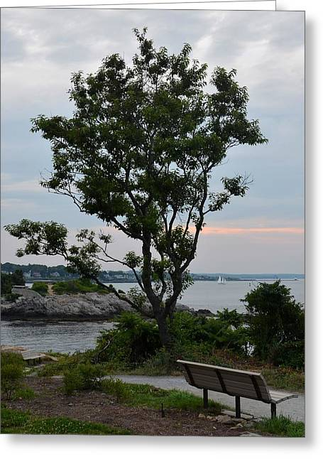 Ocean Photography Digital Art Greeting Cards - Beautiful Fort Williams park in Cape Elizabeth ME Greeting Card by Toby McGuire