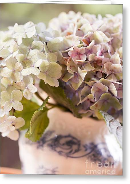 Pinks And Purple Petals Photographs Greeting Cards - Beautiful Hydrangea Blooms Greeting Card by Alanna DPhoto
