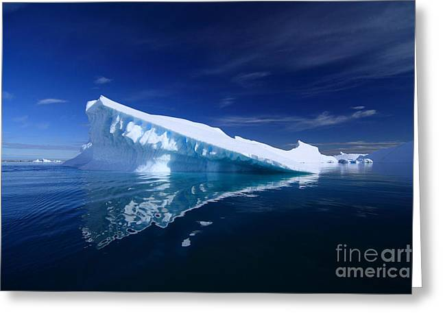 Caucasian Pyrography Greeting Cards - Beautiful Iceberg Greeting Card by Boon Mee