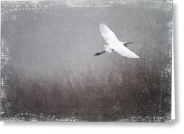 Egrets Greeting Cards - Beautiful Life Greeting Card by Rebecca Cozart