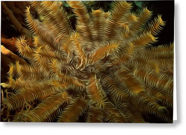 Granulatus Greeting Cards - Beautiful marine plants 12 Greeting Card by Lanjee Chee