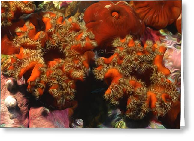 Granulatus Greeting Cards - Beautiful marine plants 5 Greeting Card by Lanjee Chee