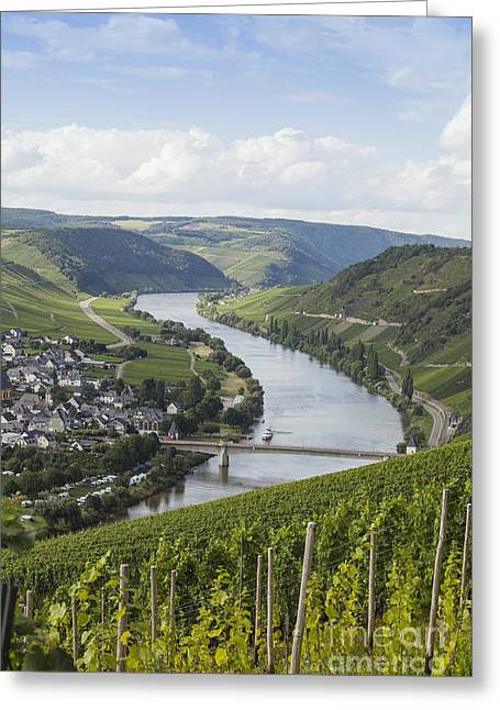 Beautiful Mosel River Greeting Card by Patricia Hofmeester
