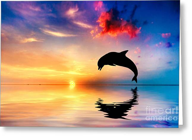 Aquatic Greeting Cards - Beautiful ocean and sunset with dolphin jumping Greeting Card by Michal Bednarek