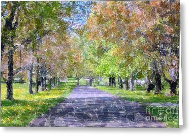 Struckle Greeting Cards - Beautiful Pathway Greeting Card by Kathleen Struckle