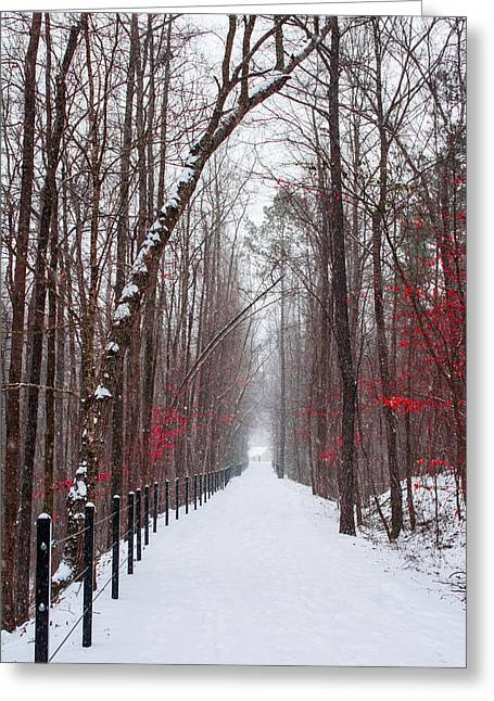 Snowstorm Greeting Cards - Beautiful Pinks Greeting Card by Parker Cunningham