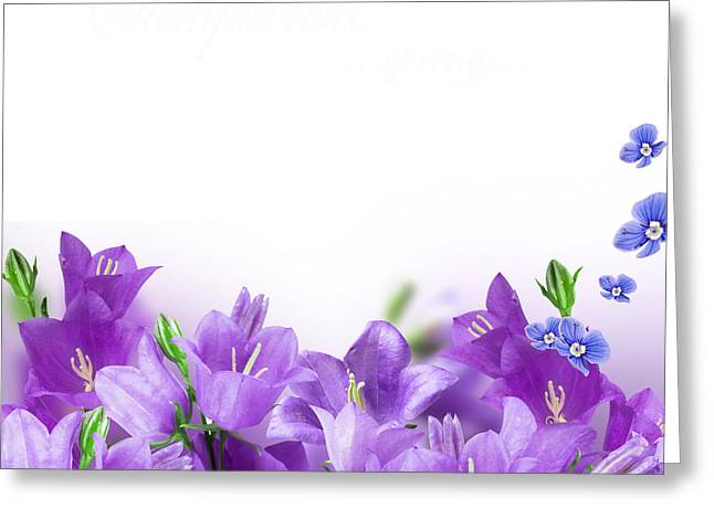 Free Flower Delivery Greeting Cards - Beautiful Purple flower Frames Greeting Card by Boon Mee