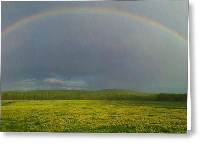Award Greeting Cards - Beautiful Rainbow  Greeting Card by Alana Ranney