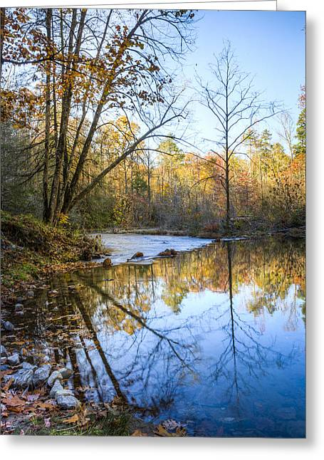Tree Reflection At Sunset Greeting Cards - Beautiful Reflections Greeting Card by Debra and Dave Vanderlaan